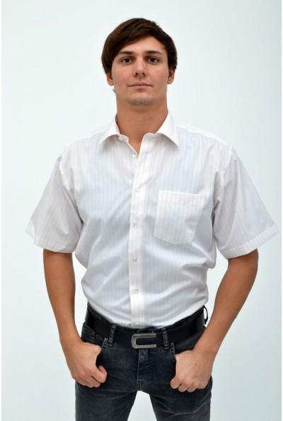 Мужская рубашка в полоску с короткими рукавами 113R018 цвет Молочный